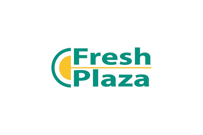 You are currently viewing Su Fresh Plaza un approfondimento dedicato alla CTI Foodtech