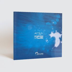 Read more about the article ACQUA